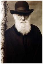 darwin_charles1881